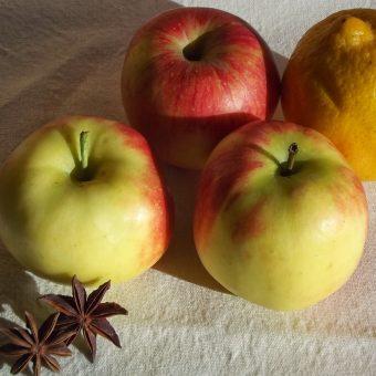 Gepocheerde appels met gember en steranijs_2