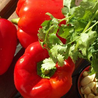 Gnocchi met pesto van geroosterde paprika en koriander